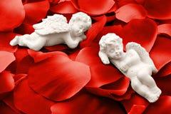 Due angeli che dormono in petali di rosa del biglietto di S. Valentino fotografia stock