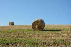 Due balle della paglia sul campo raccolto Immagine Stock