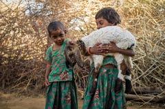Due bambine ed agnelli Fotografie Stock Libere da Diritti