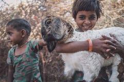 Due bambine ed agnelli Immagine Stock
