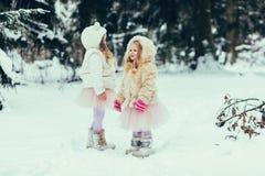Due bambine in pellicce immagine stock libera da diritti