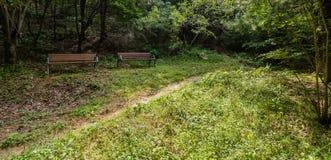 Due banchi di parco nell'ambito di ricciolo Immagini Stock
