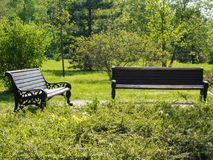 Due banchi nel parco della città Fotografie Stock Libere da Diritti