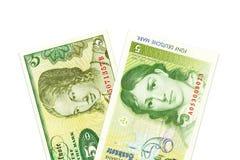 Due banconote da 5 marchi tedeschi a partire dai periodi differenti immagine stock libera da diritti