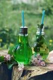 Due barattoli con i tubi sotto forma di lampadine hanno riempito di supporto di limonata su un ceppo all'aperto Fotografie Stock
