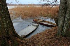 Due barche nelle canne fotografia stock