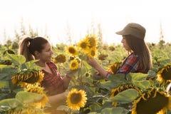 Due bei e giovani ragazze dell'agricoltore che esaminano il raccolto del girasole Fotografia Stock