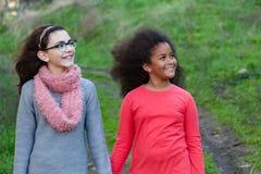 Due belle ragazze che fanno una passeggiata Fotografie Stock Libere da Diritti