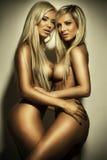 Due belle ragazze di nudi Immagine Stock
