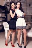 Due belle sorelle che posano a casa Fotografia Stock Libera da Diritti