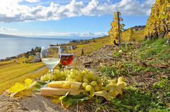 due bicchieri di vino Fotografie Stock Libere da Diritti