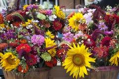 Due bushel di fiori selvaggi brillantemente colorati Immagine Stock Libera da Diritti