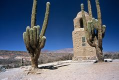 Due cactus enormi in Humahuaca, Salta, Argentina Fotografia Stock