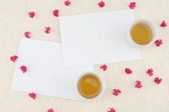 Due carte bianche in bianco Fotografie Stock