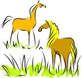 Due cavalli illustrazione di stock