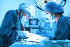 Due chirurghi veterinari nella sala operatoria Immagine Stock