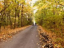 Due ciclisti sulla strada di autunno Fotografia Stock
