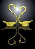 Due cigni dell'oro e la loro riflessione Immagini Stock Libere da Diritti