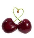 Due ciliege legate insieme in un cuore fotografie stock