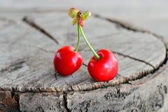 Due ciliege rosse fresche isolate su un fondo di legno d'annata con il posto vuoto per testo closeup Immagini Stock
