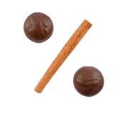 Due cioccolato e bastoni di cannella Immagini Stock Libere da Diritti
