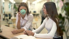 Due colleghi femminili nel cappuccino moderno della bevanda del hub e discutere strategia e giorno lavorativo sulla loro rottura stock footage