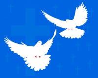 Due colombe Immagini Stock Libere da Diritti