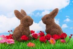 Due coniglietti di pasqua su un prato inglese verde Immagine Stock