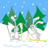 Due coniglio Ski Winter Snow Forest Vector Fotografia Stock
