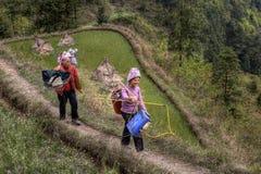 Due contadini cinesi delle donne, agricoltori, vanno sul lavoro di campo Immagine Stock