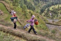 Due contadini cinesi vanno lavorare nelle risaie Immagine Stock
