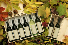 Due contenitori di regalo del vino Immagine Stock