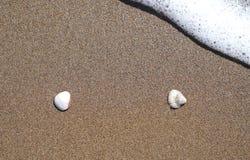 Due coperture sulla sabbia e sull'onda spumosa stanno venendo appena a loro Immagine Stock