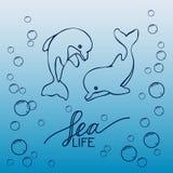 Due delfini disegnati a mano del bambino, saltanti sull'onda Rebecca 36 Illustrazione di Stock