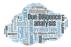 due diligence research paper