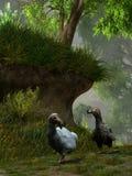 Due Dodo Birds Illustrazione di Stock