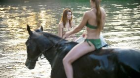Due donne attraenti guidano sui cavalli nel fiume al tramonto video d archivio