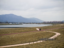 Due donne che camminano lungo il fiume durante il fiore di ciliegia Fotografia Stock Libera da Diritti
