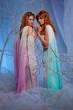 Due donne dell'elfo Immagini Stock