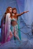 Due donne dell'elfo in foresta magica Fotografia Stock