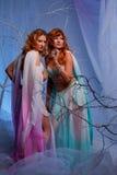 Due donne dell'elfo in foresta magica Fotografie Stock Libere da Diritti