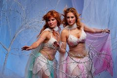 Due donne dell'elfo nel movimento Fotografia Stock