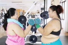 Due donne di peso eccessivo che sollevano i bilancieri Immagine Stock Libera da Diritti