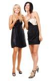 Due donne eleganti allegre Immagine Stock Libera da Diritti