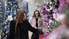 Due donne scelgono il paesaggio per le decorazioni di Natale del deposito di Natale archivi video