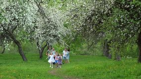 Due famiglie con i bambini nel giardino di primavera I migliori amici camminano in parco archivi video