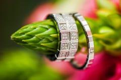 Due fedi nuziali con i diamanti contro il fondo della natura Fotografia Stock