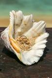 Due fedi nuziali disposte sulle dita nella sabbia Fotografia Stock