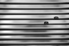 Due fedi nuziali sui ciechi Fotografie Stock Libere da Diritti