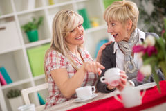 Due femmine che parlano e che bevono caffè Fotografia Stock Libera da Diritti